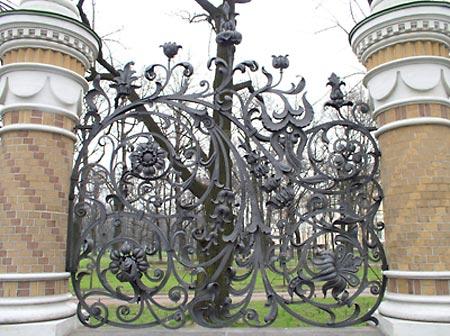 забор огорода фото